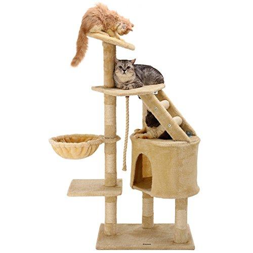 cat activity toys